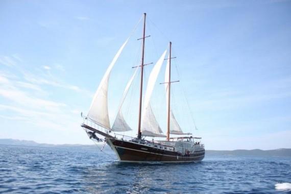 Gardelin Gulet charter