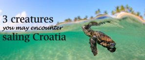 croatian aquatic wildlife